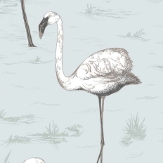 Papier peint - Cole and Son - Flamingos - Charcoal & Aqua