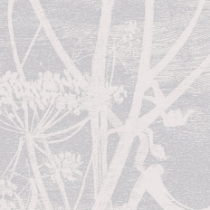 Papier peint - Cole and Son - Cow Parsley - Lilac & White