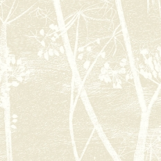 Papier peint - Cole and Son - Cow Parsley - Linen & White