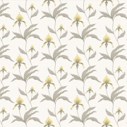 Papier peint - Cole and Son - Orchid - Yellow & White