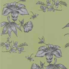 Papier peint - Cole and Son - Primavera - Green Black & Silver