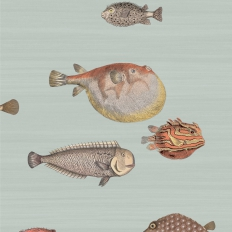 Papier peint - Cole and Son - Acquario - Pale Blue & Multi-colour