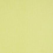 Papier peint - Thibaut - Regatta Raffia - Citrus