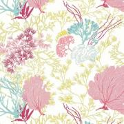Papier peint - Thibaut - Molokini - Pink