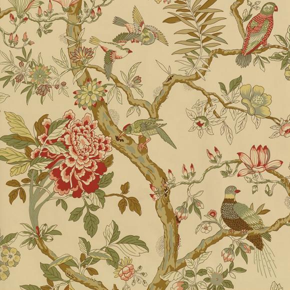 papier peint beige motif d 39 oiseaux papagayo thibaut au. Black Bedroom Furniture Sets. Home Design Ideas