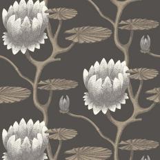 Papier peint - Cole and Son - Lily - Black & Bronze
