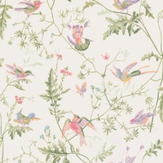 Papier peint - Cole and Son - Hummingbirds - Soft Multi Colour