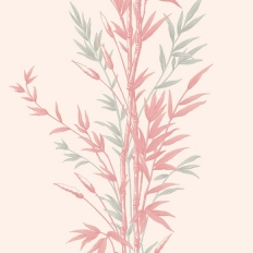 Papier peint - Cole and Son - Bamboo - Pink