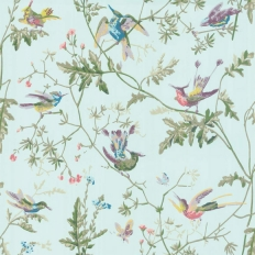 Papier peint - Cole and Son - Hummingbirds - Blue Multi-colour