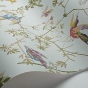 Papier peint - Cole and Son - Hummingbirds - Blue Multi-colour