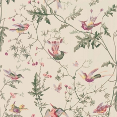Papier peint - Cole and Son - Hummingbirds - Green Multi-colour