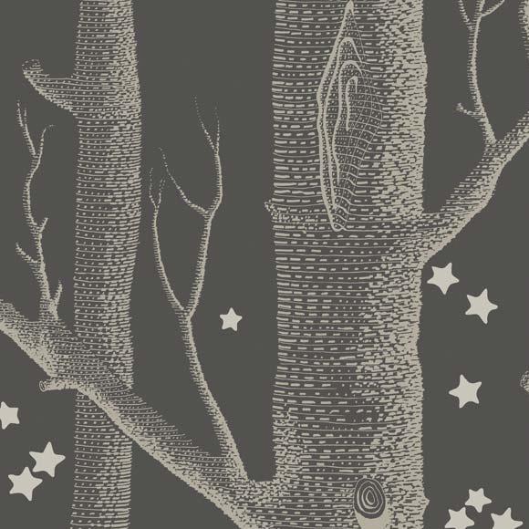 Papier Peint Woods Amp Stars Noir Et Argent Whimsical De
