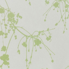 Papier peint - Tapet Cafe - Snowberry - Green