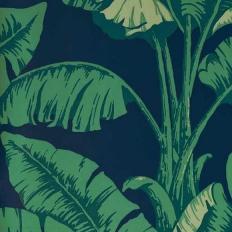 Papier peint - Nobilis - La Havane