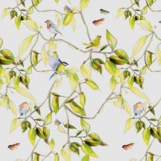 Papier peint - Geneviève Lévy Edition - Cime - Naturel