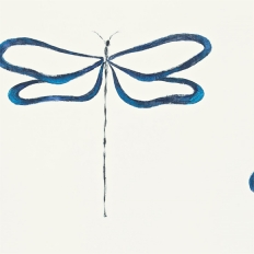 Papier peint - Scion - Dragonfly - Indigo Peacock and Chalk