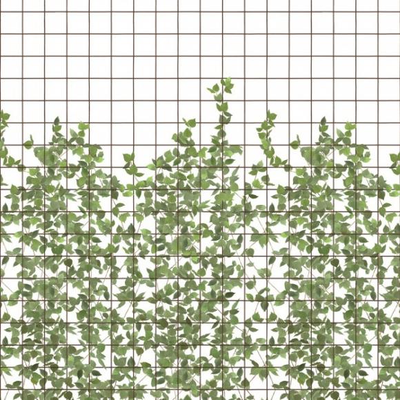 papier peint climbing clorofy grillage et plante grimpante. Black Bedroom Furniture Sets. Home Design Ideas