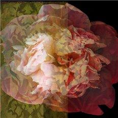 Papier peint - Labo Leonard - GF