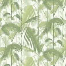 Papier peint - Cole and Son - Palm Jungle - Olive & white