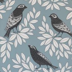 Papier peint - MissPrint - Songbird - Blue Jay