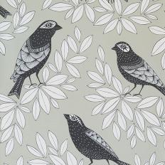 Papier peint - MissPrint - Songbird - Pebble