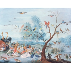 Décor mural - Au fil des Couleurs - Tropical Birds