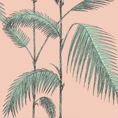 Papier peint - Cole and Son - Palm Leaves - Rose et vert menthe