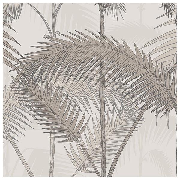 papier peint palm jungle taupe collection icons de cole and son. Black Bedroom Furniture Sets. Home Design Ideas