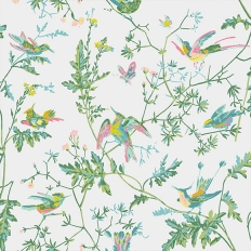 Papier peint - Cole and Son - Hummingbirds - vert et rose