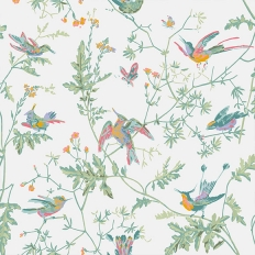 Papier peint - Cole and Son - Hummingbirds - rose et vert