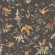 Papier peint - Cole and Son - Hummingbirds - marron et orange