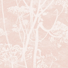 Papier peint - Cole and Son - Cow Parsley - rose ballerine