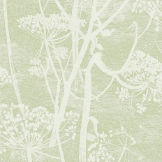 Papier peint - Cole and Son - Cow Parsley - vert olive