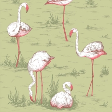 Papier peint - Cole and Son - Flamingos - Vert olive