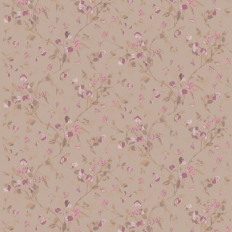 Papier peint - Cole and Son - Sweet Pea - Brown