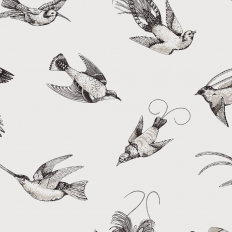 Papier peint - Cole and Son - Tropical Birds - White and Black
