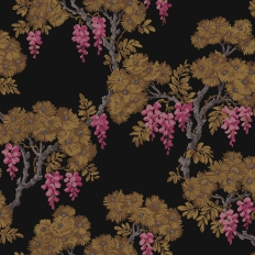 Papier peint - Cole and Son - Wisteria - Black Laquer