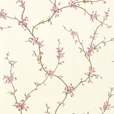 Papier peint - Thibaut - Buds - Pink and Cream