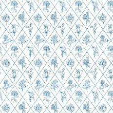 Papier peint - Thibaut - Posy - Blue on White