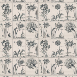 Papier peint - Thibaut - Prints - Black on Beige