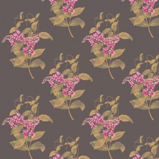 Papier peint - Cole and Son - Madras Violet  - Black