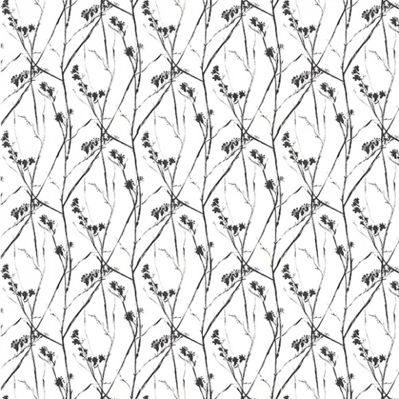 Papier peint - Thibaut - Blossoms - Black and White