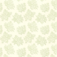 Papier peint - Thibaut - St Lucia - Green on Cream