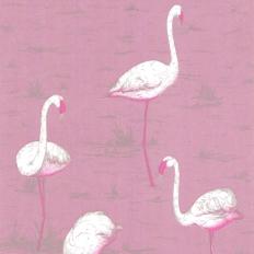 Papier peint - Cole and Son - Flamingos - Pink