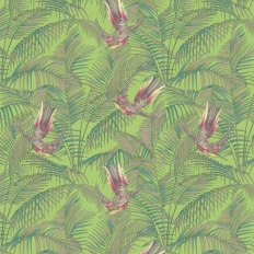 Papier peint - Matthew Williamson - Sunbird - Green