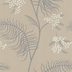 Papier peint - Cole and Son - Mimosa - Taupe Grey & White