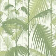 Papier peint - Cole and Son - Palm Jungle - Olive & white