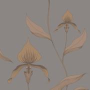 Papier peint - Cole and Son - Orchid - Bronze & Slate