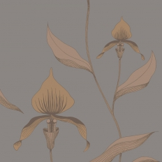 Papier peint - Cole and Son - Orchid - Bronze & Slate