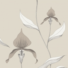 Papier peint - Cole and Son - Orchid - Linen & White